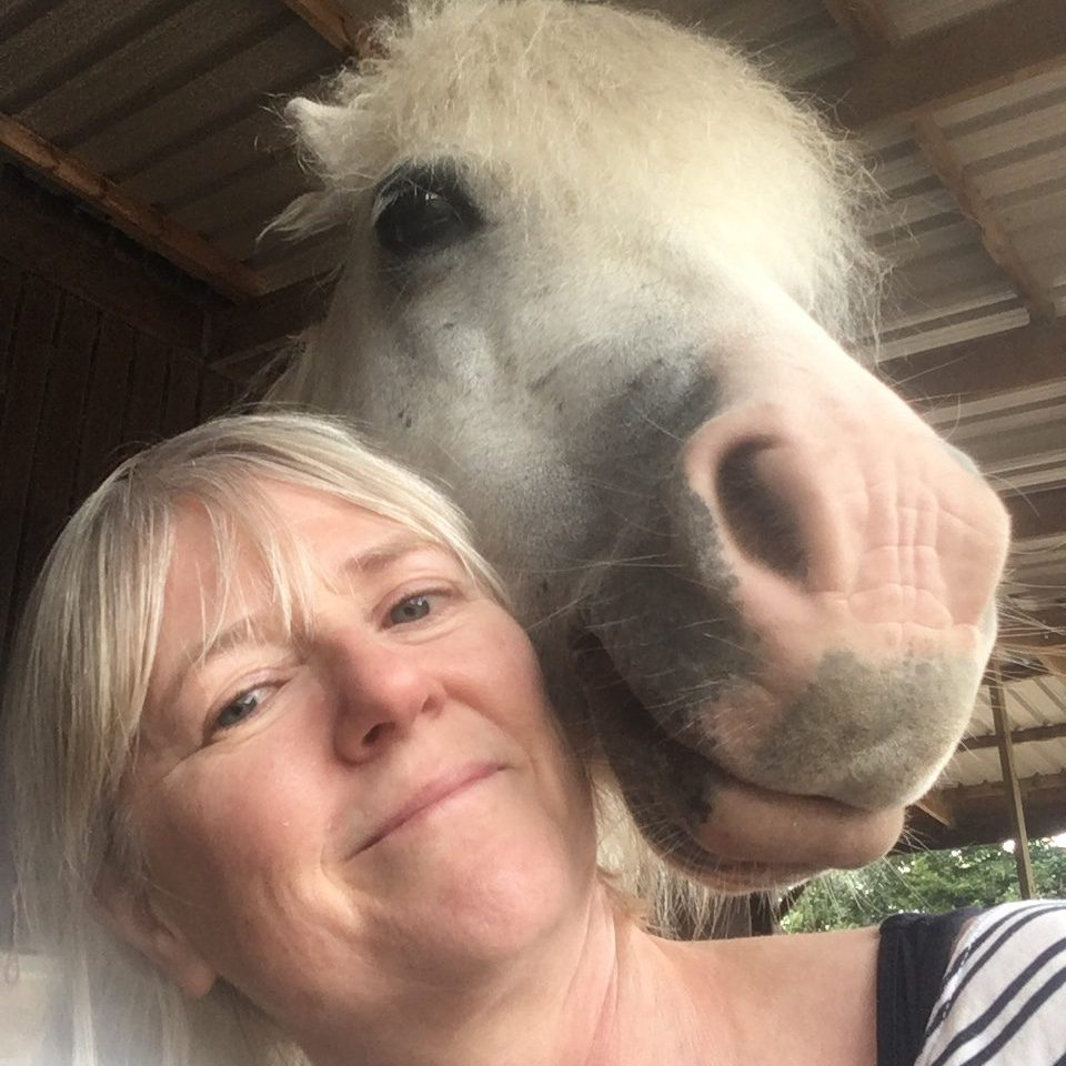 Equine facilitated psychotherapy Sussex